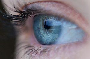 Sherratt Opticians Crewe Cheshire
